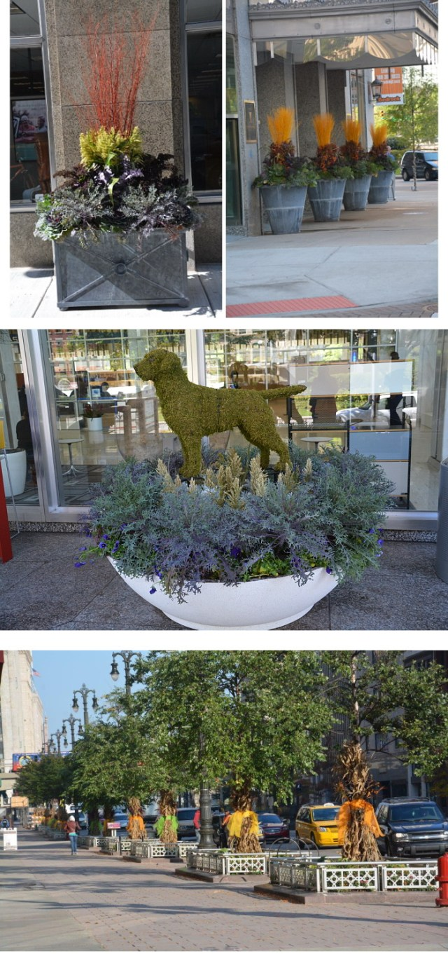 Deborah Silver's recent work outside downtown Detroit's Chase Tower. Clockwise, from upper left: A classic verdigris container adorned with millet, dry twigs, broom corn, eucalyptus, milkweed pods and dried perennial stem and planted with winter-hardy cabbage and kale; a row of round pots with a similar arrangement; a low-profile wide white planter filled with dusty miller and cut green millet, topped by a moss dog as a focal point. Photos courtesy of Deborah Silver & Co. Inc.