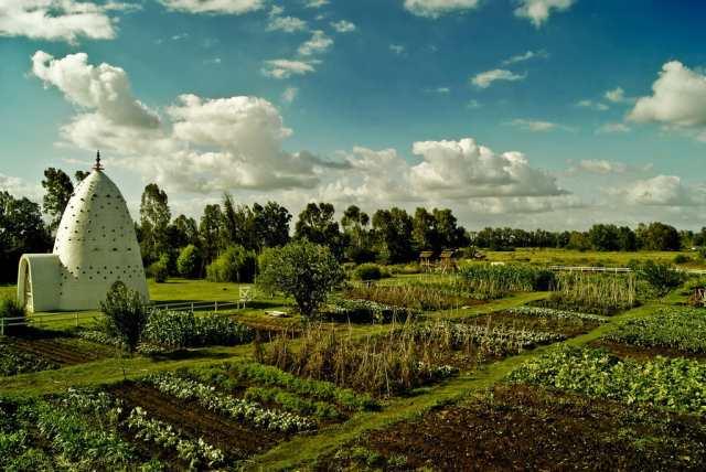 Grow, Pray, Eat: The vegetable garden at Eco Yoga Park, a volunteer-run retreat in Argentina. Photo courtesy of Eco  Yoga Park.