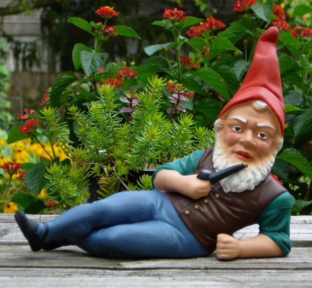 A German garden gnome. Photo courtesy of Wikipedia.