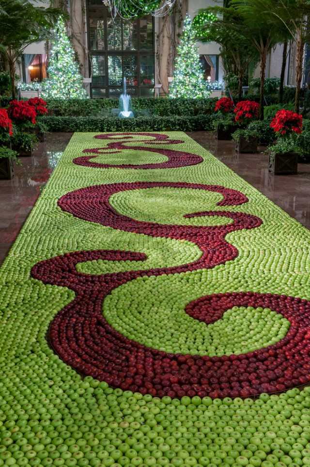 "A floating ""tapestry"" of Granny Smith and Rome apples in the conservatory. The holiday theme this year is fruit, and includes a Christmas tree festooned with 175 blown-glass pears, and outdoors, a citrus and berry tree to feed the birds."