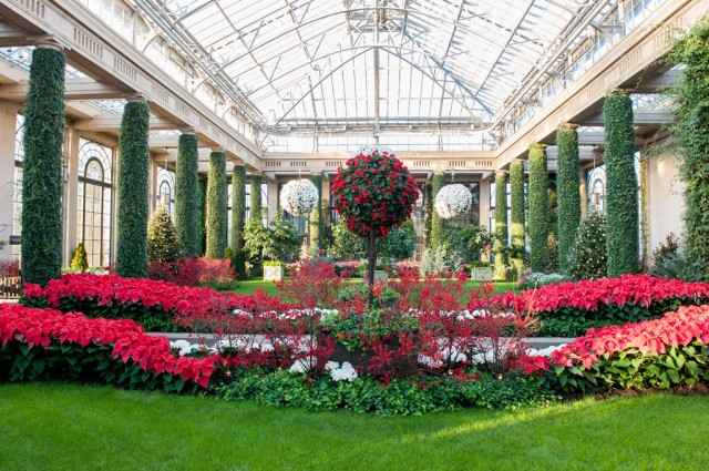 Indoors is where the passionate gardener really gets his or her fix. The 4-acre conservatory includes the Orangery. Most of Longwood's plants are grown on the property.
