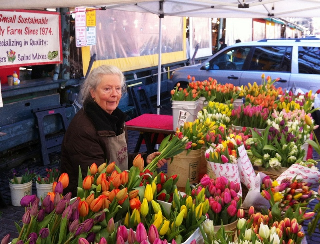 Better Bouquets. Tulip flower farmer Gretchen Hoyt, from Alm Hill Farms in Everson, Washington. Photo courtesy of Debra Prinzing.