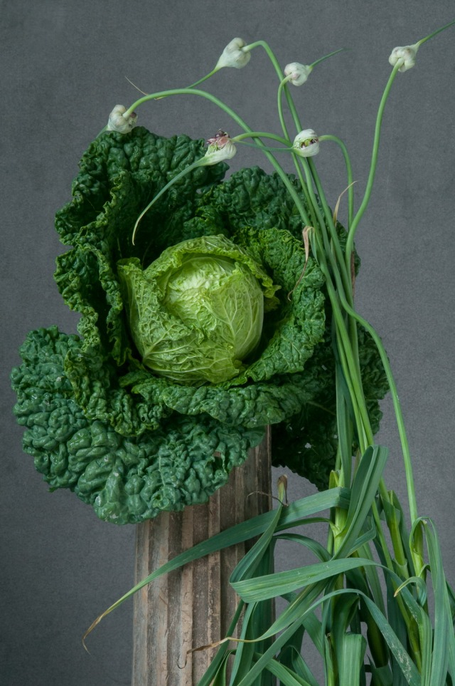 Lynn-Karlin_Savoy_Cabbage_&_Garlic