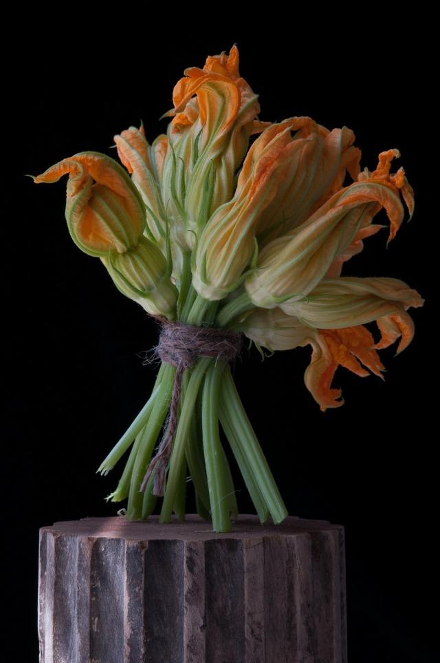 Lynn-Karlin_Squash-Blossoms