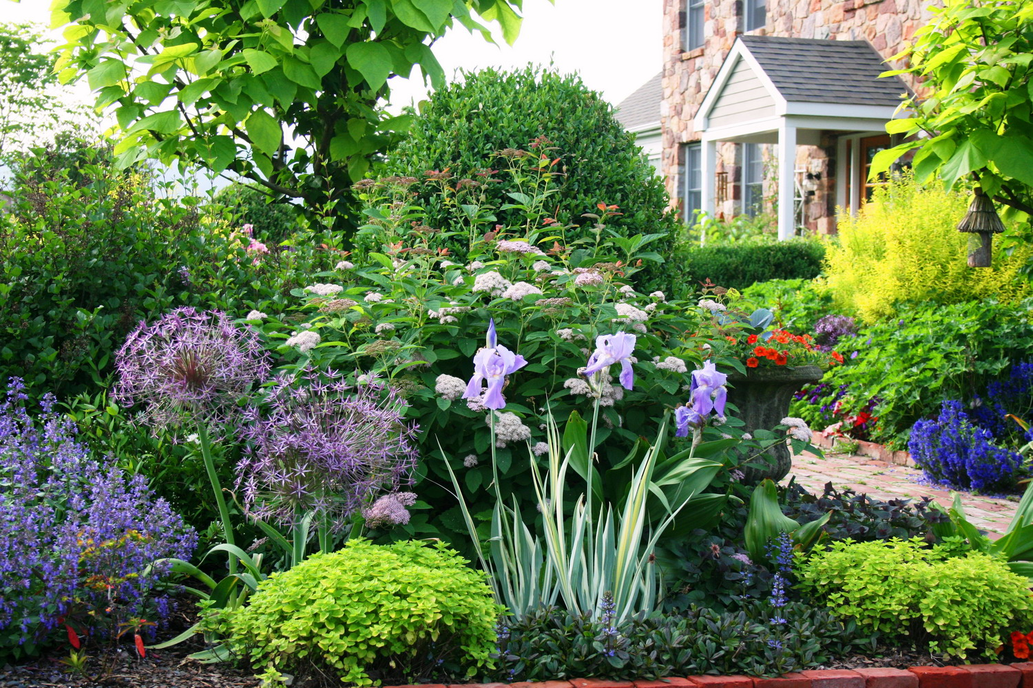 Photo of the week a lush front yard garden garden variety for Landscaping plants