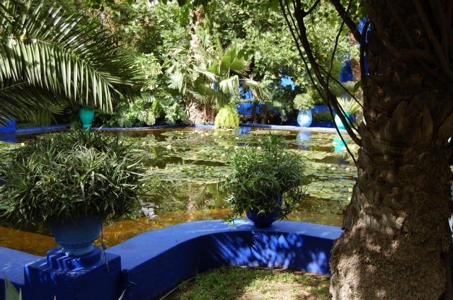 majorelle-gardens-marrakech-morocco-yves-saint-laurent-3