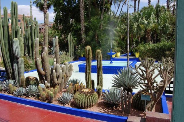 majorelle-gardens-marrakech-morocco-yves-saint-laurent-5