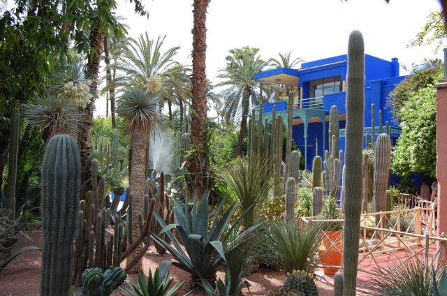 majorelle-gardens-marrakech-morocco-yves-saint-laurent-6
