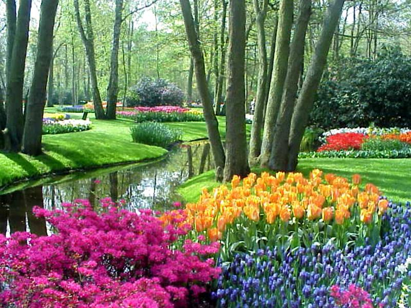 photos the world s largest flower garden garden variety