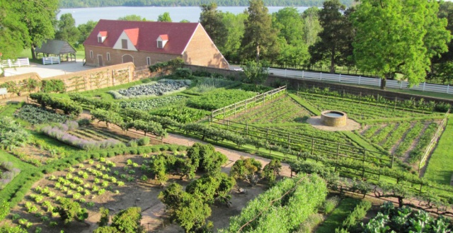 The kitchen garden at Mount Vernon, George Washington's estate in Virginia. Photo courtesy of Dean Norton.