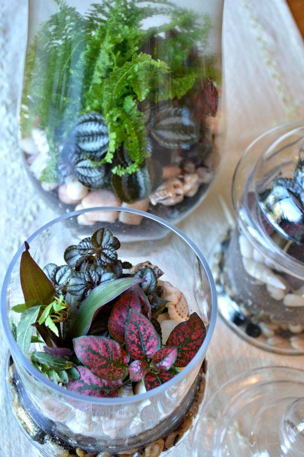 Terrarium_indoor_garden_interior_design_melinda_graham_2