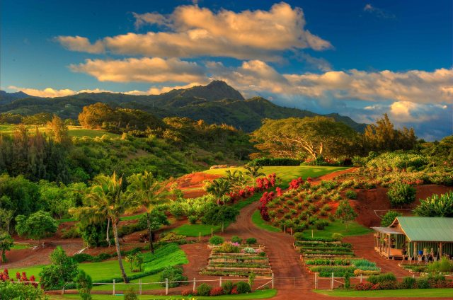 A lush lakeside farm and garden set in a valley at Kukui'ula, a luxury residential community and private club in Kaua'i, Hawaii.