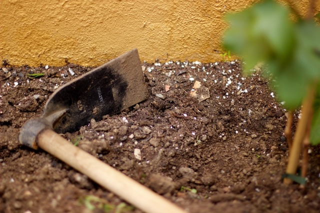 dirt-1835651_960_720
