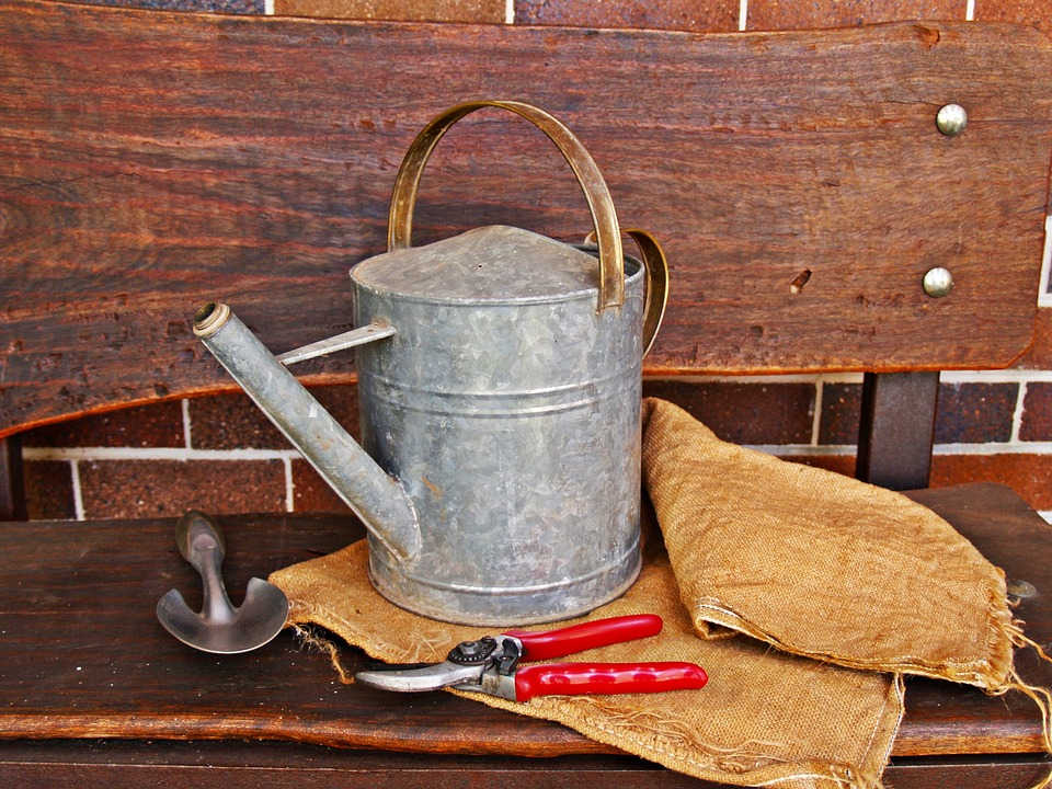 watering-can-1466491_960_720