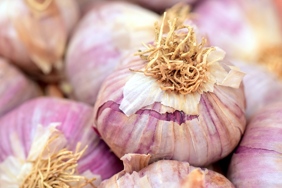 garlic-2390990_960_720